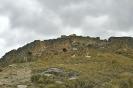 Susupillo - Peru